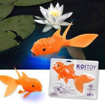 Koi fish and toys on pinterest for Koi fish life span