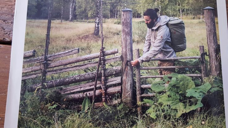 Scandinavian fence and gate