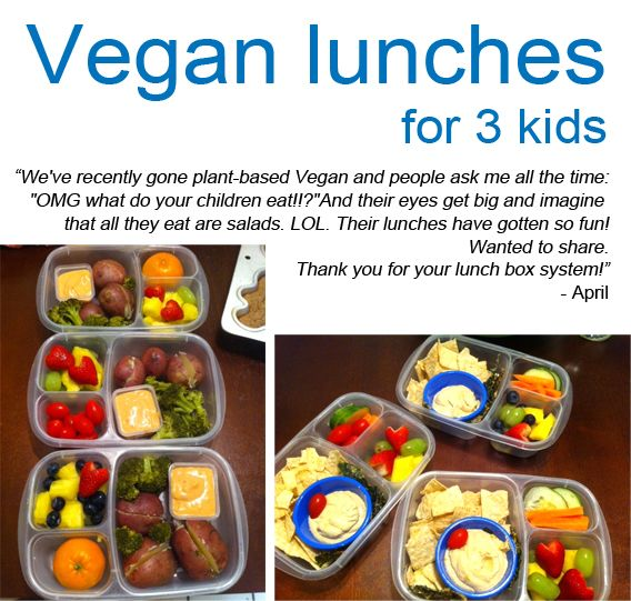Plant based lunches packed in #easylunchboxes