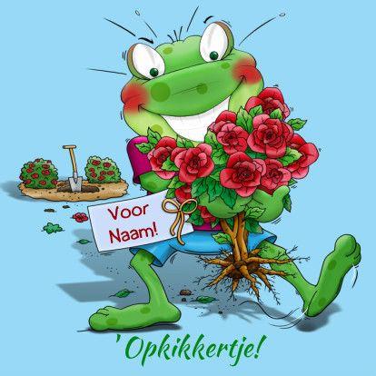 Beterschapskaart met opkikker en rozen, geplukt voor de Zieke. Design: Hans Elsenburg. Te vinden op: www.kaartje2go.nl