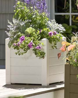 square white planter