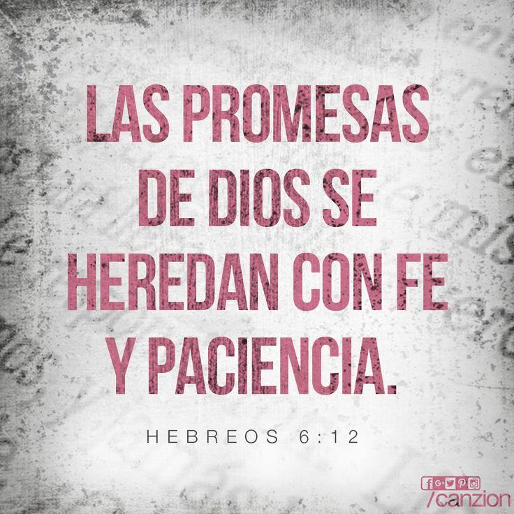 «Entonces, no se volverán torpes ni indiferentes espiritualmente. En cambio, seguirán el ejemplo de quienes, gracias a su fe y perseverancia, heredarán las promesas de Dios». —Hebreos 6:12