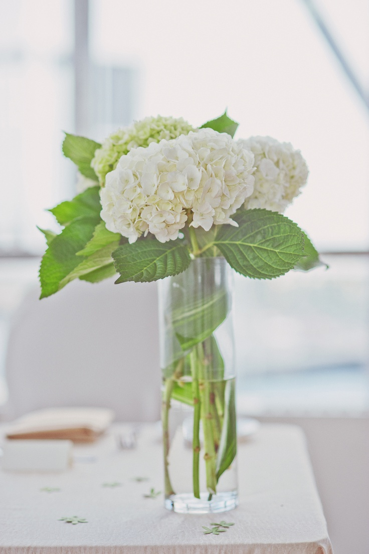 Best images about centerpieces hydranga on pinterest