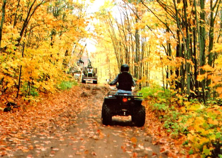 ATV Trail Riding in the fall colors...thank goodness my birthday's in early primetime colors...