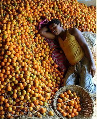 Naps Siliguri bazar West Bengal India