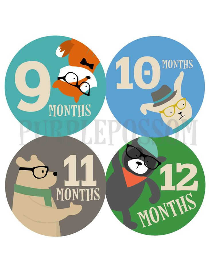 Monthly Baby Stickers Boy Monthly Baby Stickers por PurplePossom, $9,00