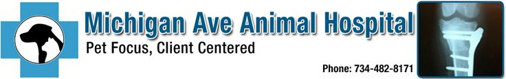 LIVER MASS REMOVAL Michigan_Ave_Animal _Hospital-Header