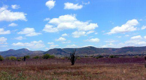 Minador do Negrão (alagoas) brasile | Minador Do Negrão, Alagoas » Mapas|Fotos|Imagens de Satélite ...
