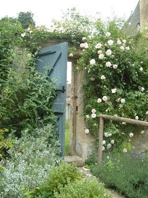The secret garden....using existing doors headed to the dumpster...but, not! USE them for a secret garden!