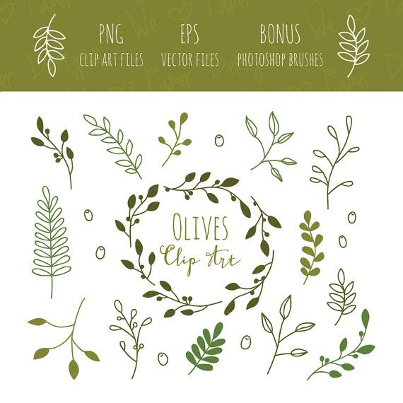 DESCRIPTION:    A delicate, olive branches clip art set for digital scrapbooking, invites, cards, printing, and any other type of project you