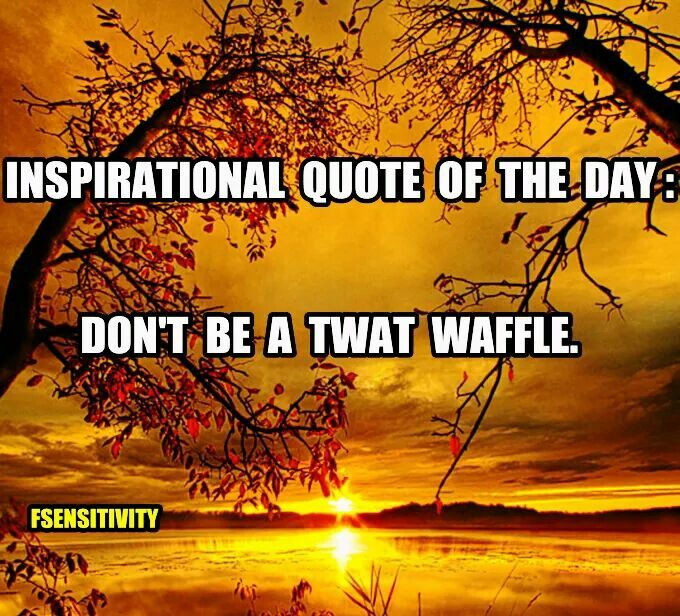 Inspirational Quote Of The Day: Don't Be A Twat Waffle