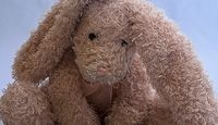 How Can I Clean an Old Stuffed Animal?
