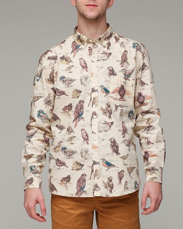 Jackdaw shirt by Barbour.Fashion Pearls, Apc Petite, Birds Stuff, Pattern, Fashion Cravings, Men Fashion, Barbour, Jackdaw Shirts, Birds Species