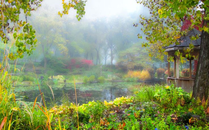 A foggy day by tmotntt on 500px