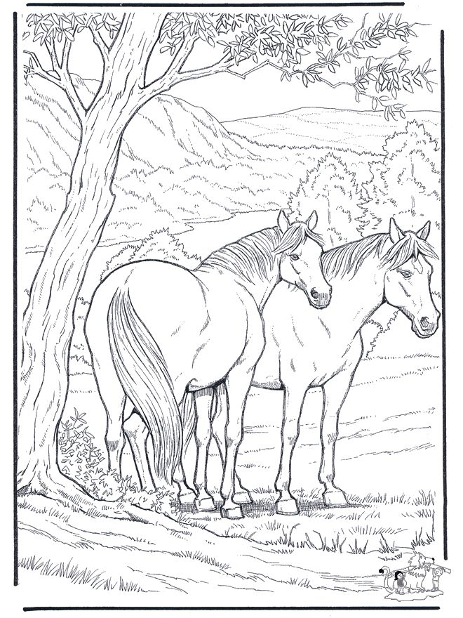 Beautiful Horse Coloring Pages | Colorings Of Horses