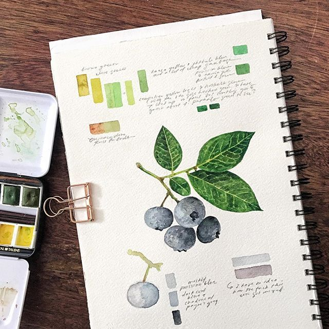 Yesterday's blueberries study + another exploration of green mixes and some maddening blue + the affirmation that I have a much too heavy hand for watercolors but ehhh I'll figure that one out eventually. On Arches cold-pressed that I had bound into a journal, woohoo.