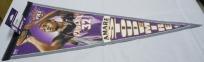 Amare Stoudemire Phoenix Suns 12 X 30 Pennant