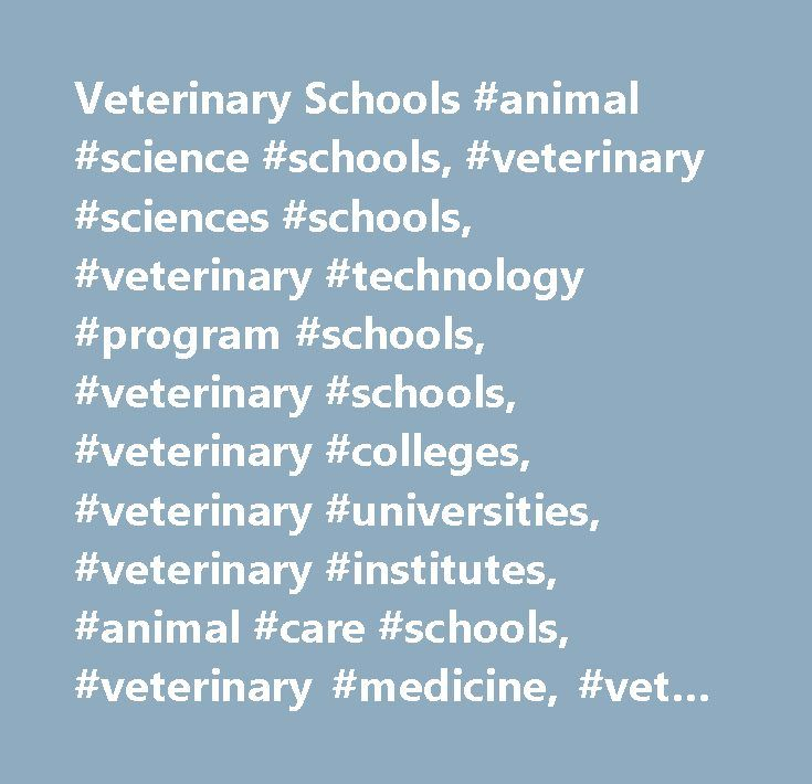 Veterinary Schools #animal #science #schools, #veterinary #sciences #schools, #veterinary #technology #program #schools, #veterinary #schools, #veterinary #colleges, #veterinary #universities, #veterinary #institutes, #animal #care #schools, #veterinary #medicine, #vet #schools, #vet #colleges, #animal #studies, #usa, #veterinarians, #education, #school #of #veterinary #medicine #…