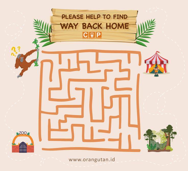 labyrinth orangutan