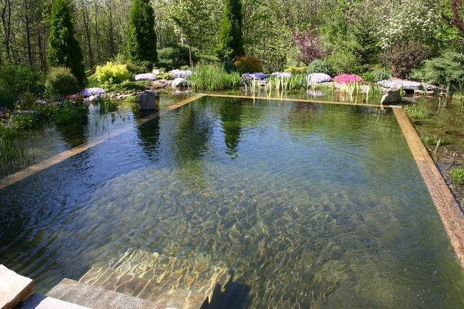 Natural swimming pools.  No chemicals, same cost as a traditional pool.  I'm in LOVE with this idea!
