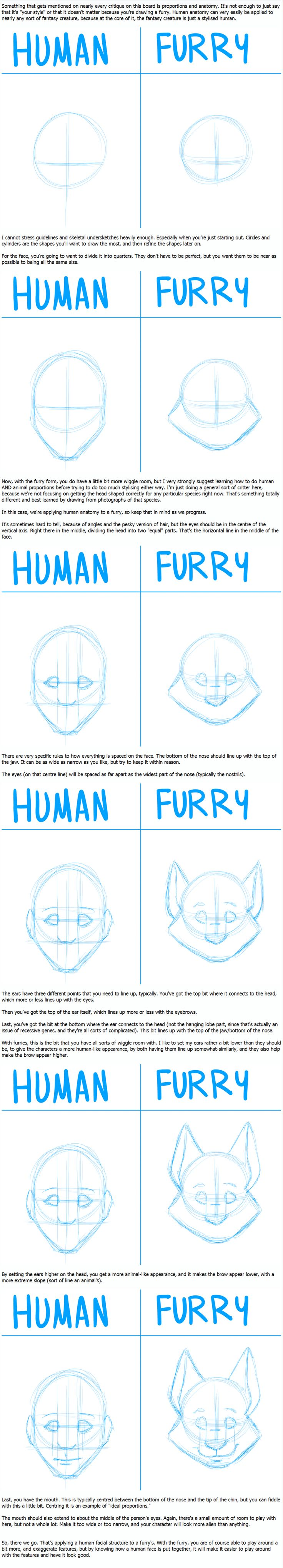 How to turn a human into a furry anime drawing tutorial.