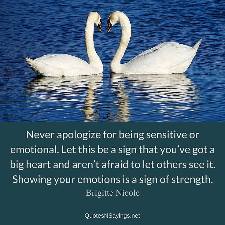 """Brigitte Nicole quote about strength – """"Never apologize for being sensitive or emotional. Let this be a sign that you've got a big heart and aren't afraid to let others see it. Showing your emotions is a sign of strength."""""""