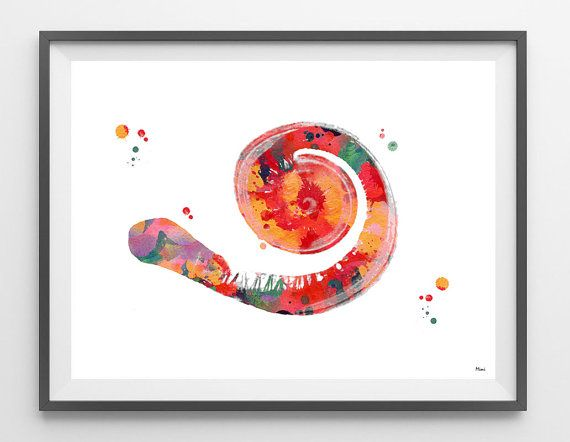 Cochlea Watercolor Print anatomy art inner ear by MimiPrints