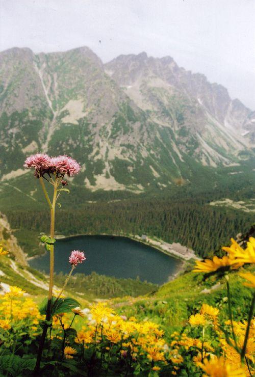 Slovakia, High Tatra national park, Popradske pleso