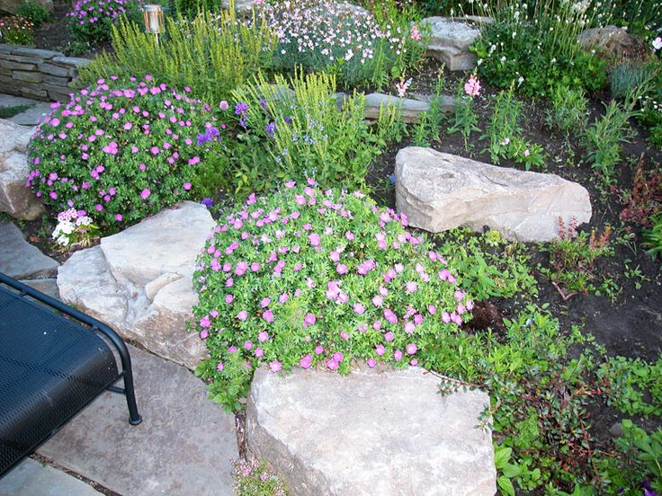 17 best images about curbside gardens on pinterest for Curbside garden designs