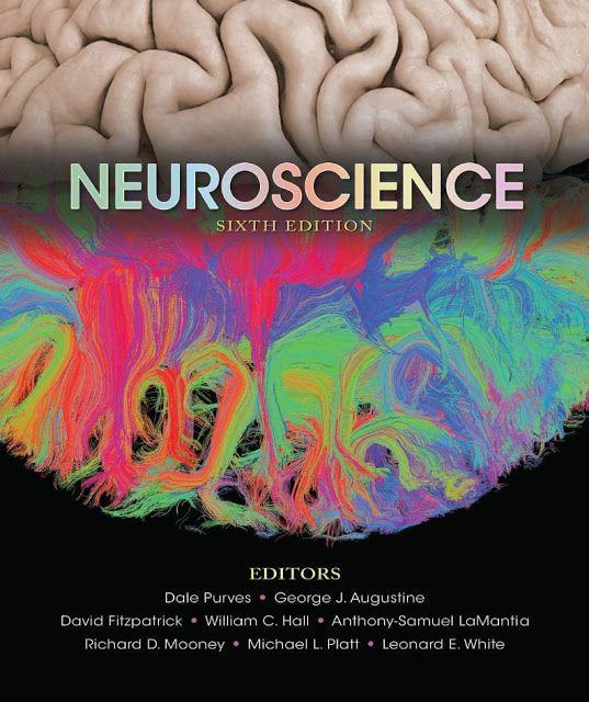 Neuroscience 6th Edition 2018 By Dale Purves PDF EB00K