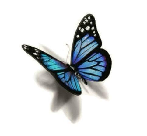 SHIP FROM NY- Temporary Tattoo -3D Butterfly