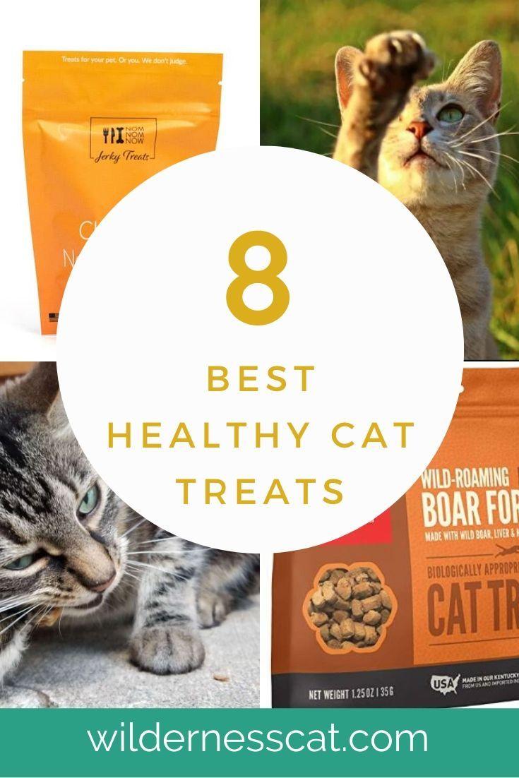 8 Best Healthy Cat Treats Our Favorite Cat Treats Of 2020 In 2020 Wellness Cat Food Healthy Cat Treats Cat Food