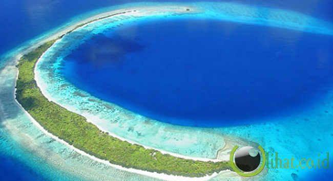 Palung adalah jurang yang berada di dasar laut