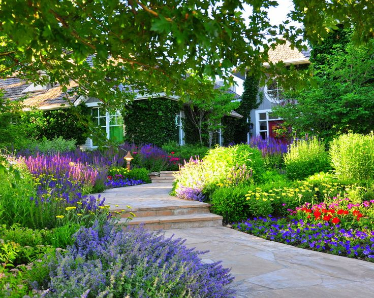 how to design a colorful flower bed from marianne lipanovich houzz and designscapes colorado inc - Garden Design Trends 2014