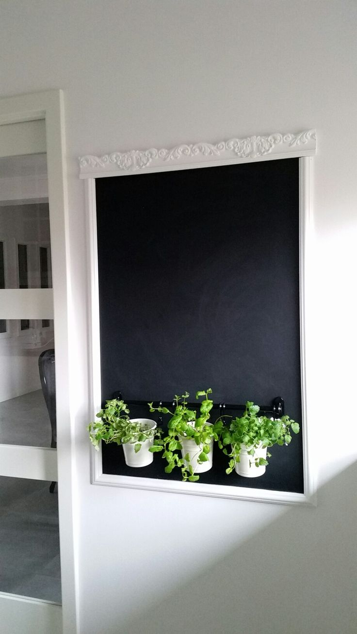 Chalkboard and herbs