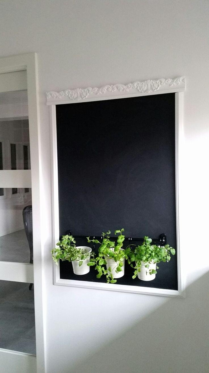 Chalkboard and herbs