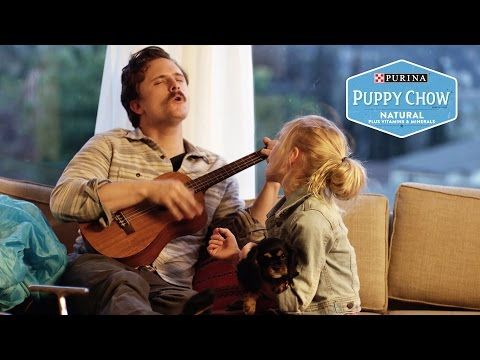 Puppyhood: The Babysitter // Presented By BuzzFeed & Purina Puppy Chow - YouTube