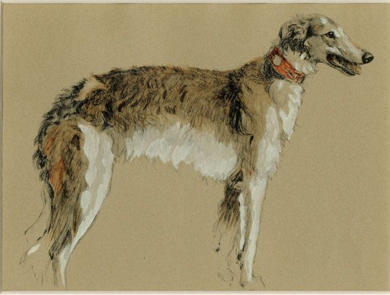 """Matted Vintage Dog Print  Borzoi /  Russian Wolfhound C. 1934 Cecil Aldin 11x14"""""""