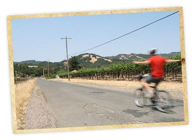 One of Sonoma's lesser-known and oh-so-ripe attractions is its half-mile of rail-trail, part of a longer route that features vineyards and wine tasting along the way. Bring your own bike or rent from Sonoma Valley Cyclery, just off Sonoma square; they include a detailed map with directions to