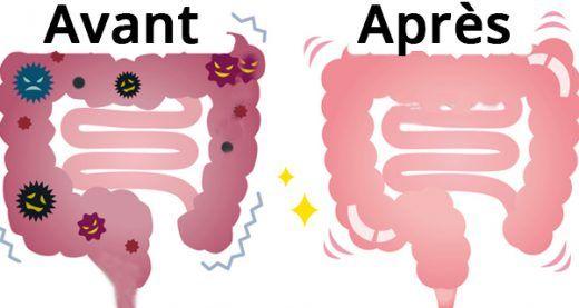Voici comment dégonfler votre ventre et nettoyer le colon | Santé+ Magazine - Le magazine de la santé naturelle