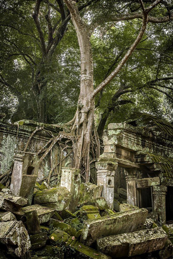 Christian Fletcher Siem Reap Cambodia, SR1019SQ