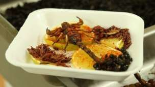 Grasshoppers - the new sushi? - BBC News
