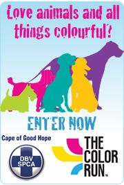 Do you love animals and all things colourful? Why not enter The Color Run on the 17 October 2015, as the Happiest 5kms on the Planet. This is a unique paint race that celebrates Healthiness, Happiness an Individuality. Now you can also celebrate animals by purchasing a Color Run Fun Raising ticket for R250.00 of which R40.00 will be donated to the Cape of Good Hope SPCA.  Click here to find out more: http://www.spca-ct.co.za/newsarticle.asp?id=3116  #thecolourun #colourrun 