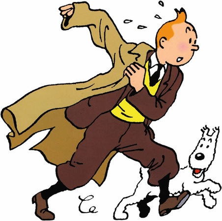 Tim und Struppi (Les aventures de Tintin) comic books
