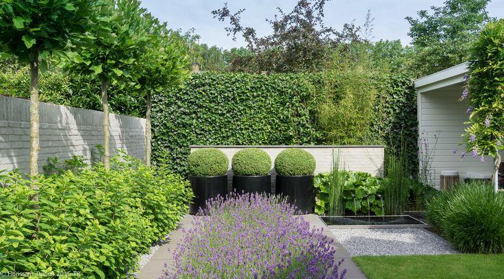 Strakke tuin met een groene uitstraling, vijver, overkapping wit en muurtje welke we gecementeerd hebben
