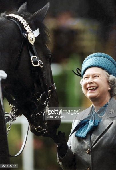 Browse In Focus: Queen Elizabeth - The Horse Whisperer latest photos. View images and find out more about In Focus: Queen Elizabeth - The Horse Whisperer at Getty Images.