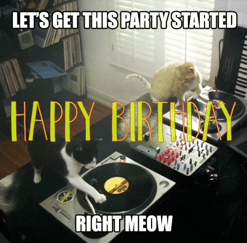 funny happy birthday gif