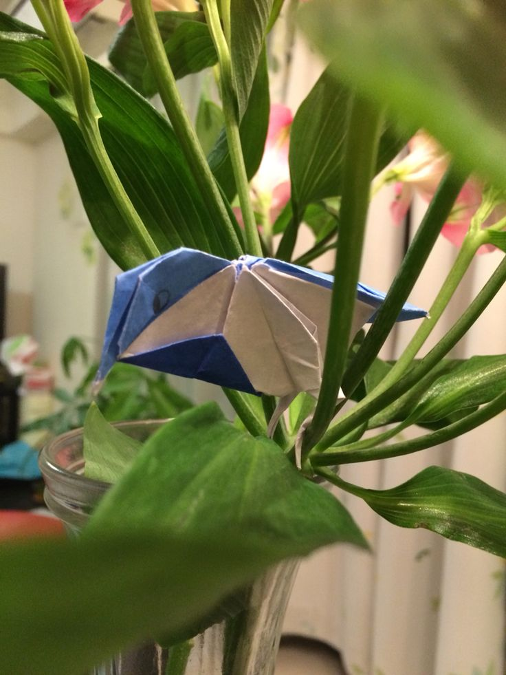 my son made origami!