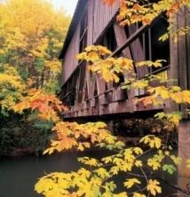 Covered Bridges!: Bridge Capital, Favorite Places, Cottage Grove, Cottages, Grove Covered, Covered Bridges, Travel Oregon