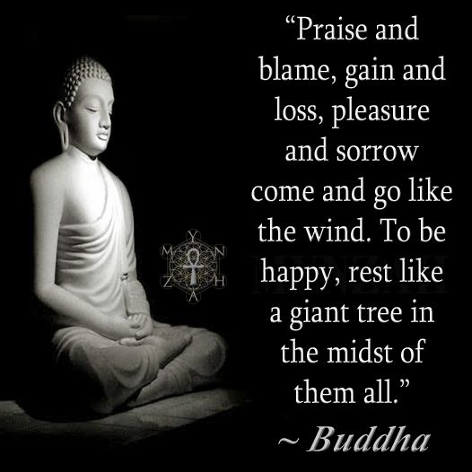 """Praise and blame, gain and loss, pleasure and sorrow come and go like the wind. To be happy, rest like a giant tree in the midst of them all."" ~ Buddha"